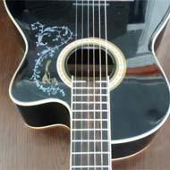 گیتار برند سانتانا اکشن پایین