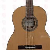 فروش گیتار کردوبز cg25