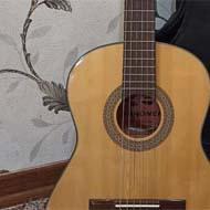 گیتار آلمانی برند سندنر
