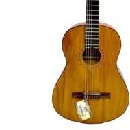 فروش گیتار برند دیاموند